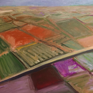 Parched Fields