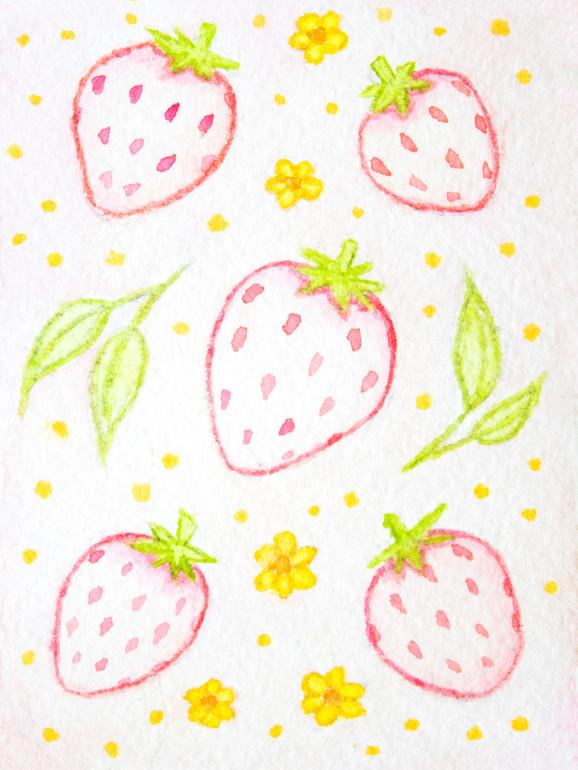 Pink Pineberries