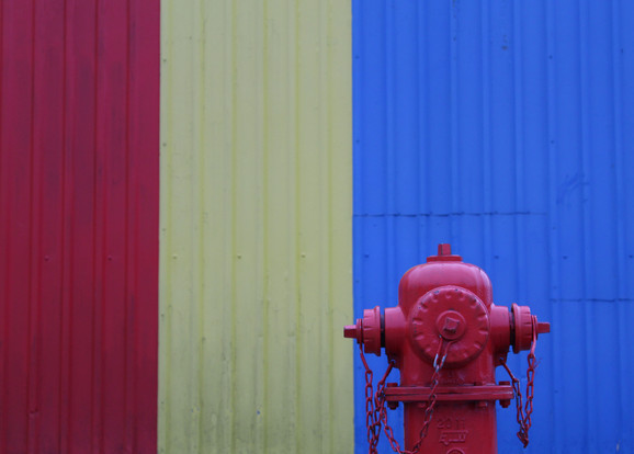 Primary Colors, 2018