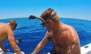 Scott Goodknight - Swimming with Sharks