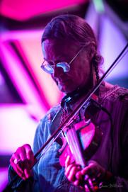 violin-guy.jpg