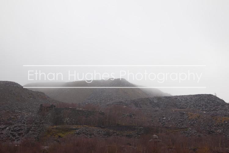 Landscape Bethesda 6 E.H. Photography