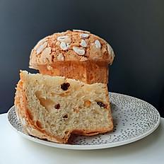 義大利聖誕麵包 -潘娜朵妮- Panettone