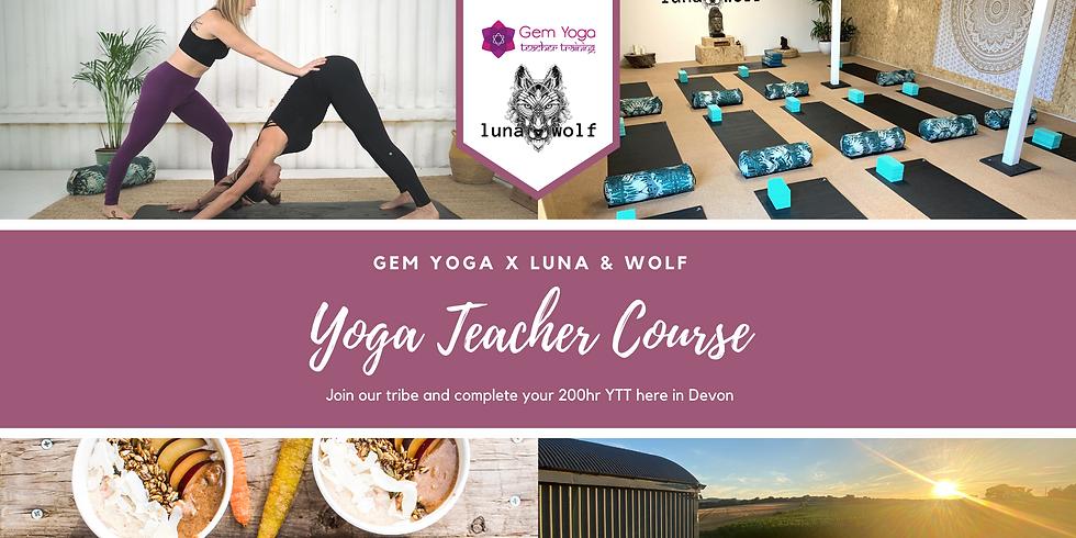 200hr Vinyasa Yoga Teacher Training
