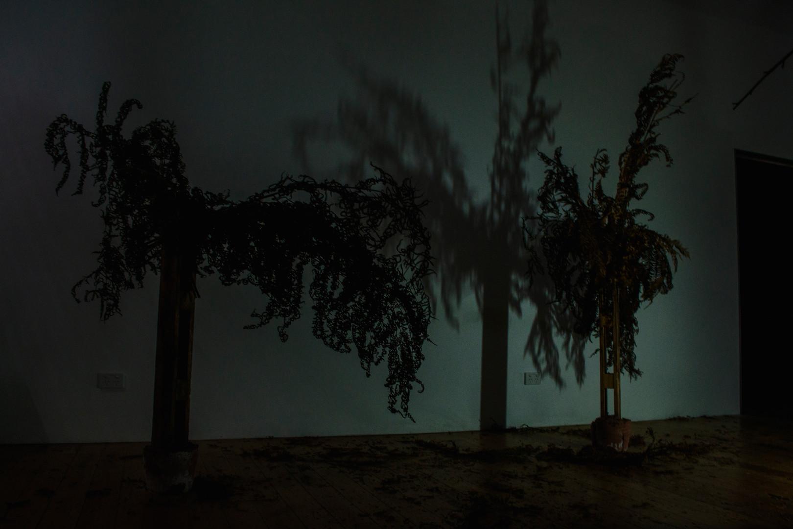 Nuclear Deforestation I, 2019 (detail)