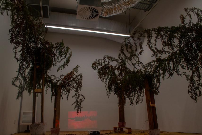 Nuclear Deforestation I, 2019 (lights on detail)