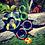 Thumbnail: Goughnuts Flynut - Flying Disc Toy