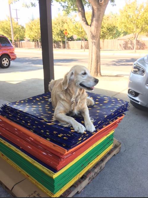3' x 3' Goughnuts Anti-Fatigue Rubber Mat - Dog Bed