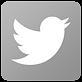 twitter-logo-grey-png-4.png