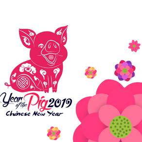 Celebrating The Year of Pig 2019