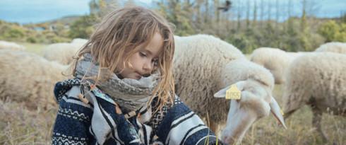Jeanne, petite bergère (2019)