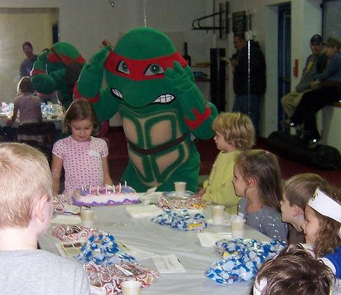 ninja-turtle-karate-birthday-party-cake-