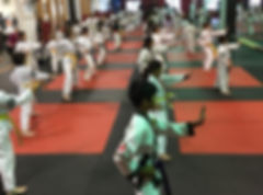 Kids Karate Class doing Kata