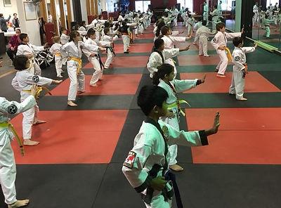 Kids Karate Class doing Kata