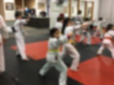 Focused and Fun Karate Camp