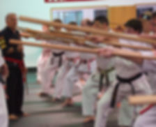 Karate Seminars for IIKF Members and Dojos