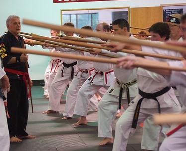 Karate Seminars for IIKF Members and Dojos