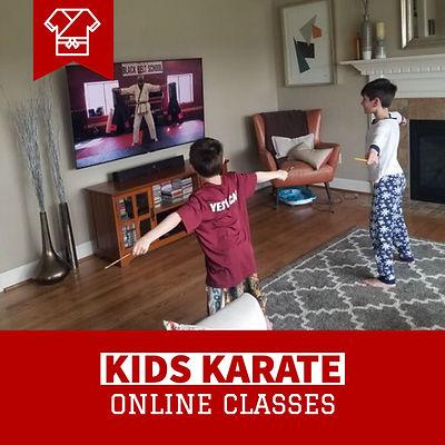 Remote Karate 1.jpg