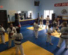 Kids Karate Seminars in Rochester