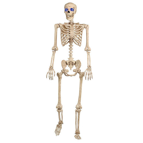 "60"" Pose-N-Stay Skeleton with Blue LED Eyes"