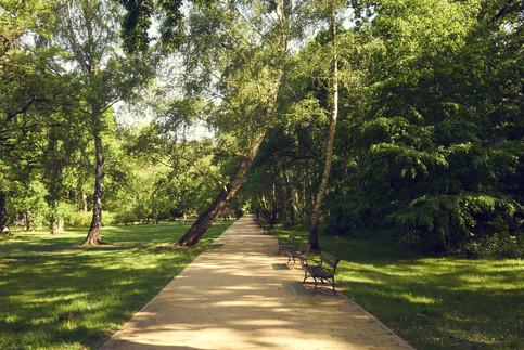Kurpark im Sommer