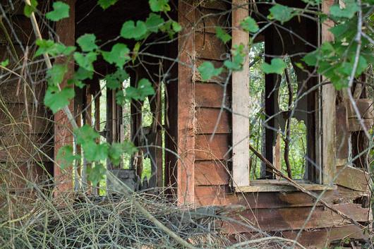 Abandoned_House_6.jpg