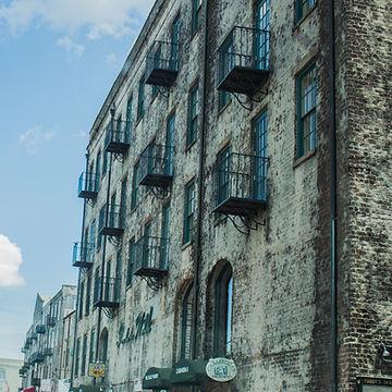 Savannah 2.jpg