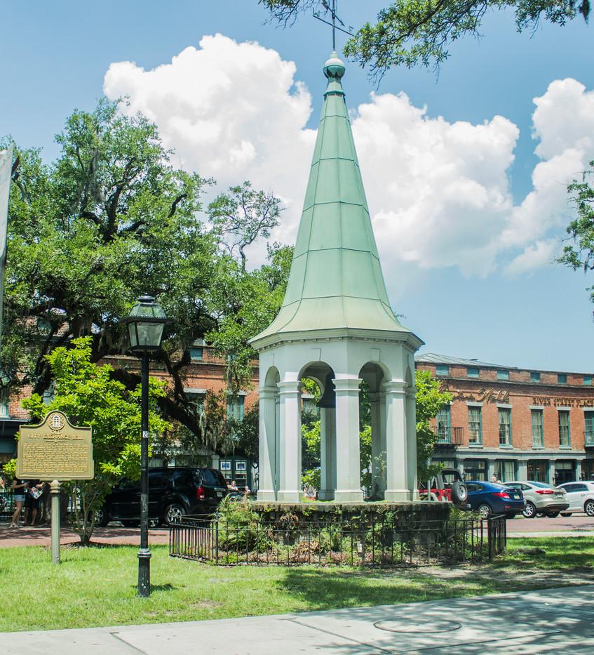 Savannah 3.jpg