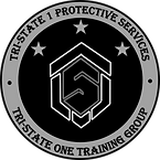 TSOTG Training Patch LIGHT_edited.png