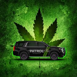 Cannabis Sector Security