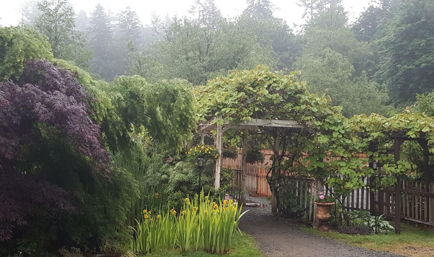 A foggy mid-May morning