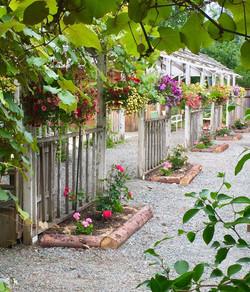 The arbor gardens