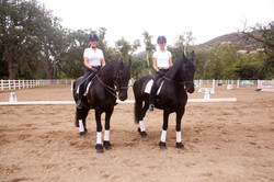 Tane and Marta w Friesians.jpg