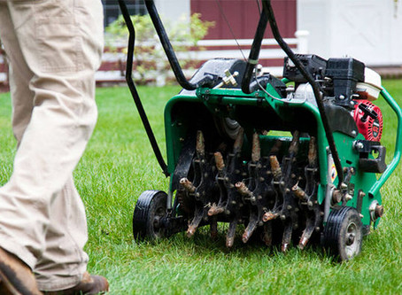 Why you need to start Aerating and Power Raking