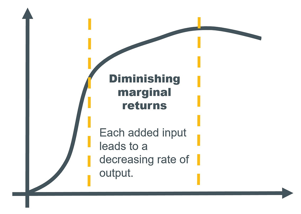 Diminishing marginal returns: ACCA Accountant in Business