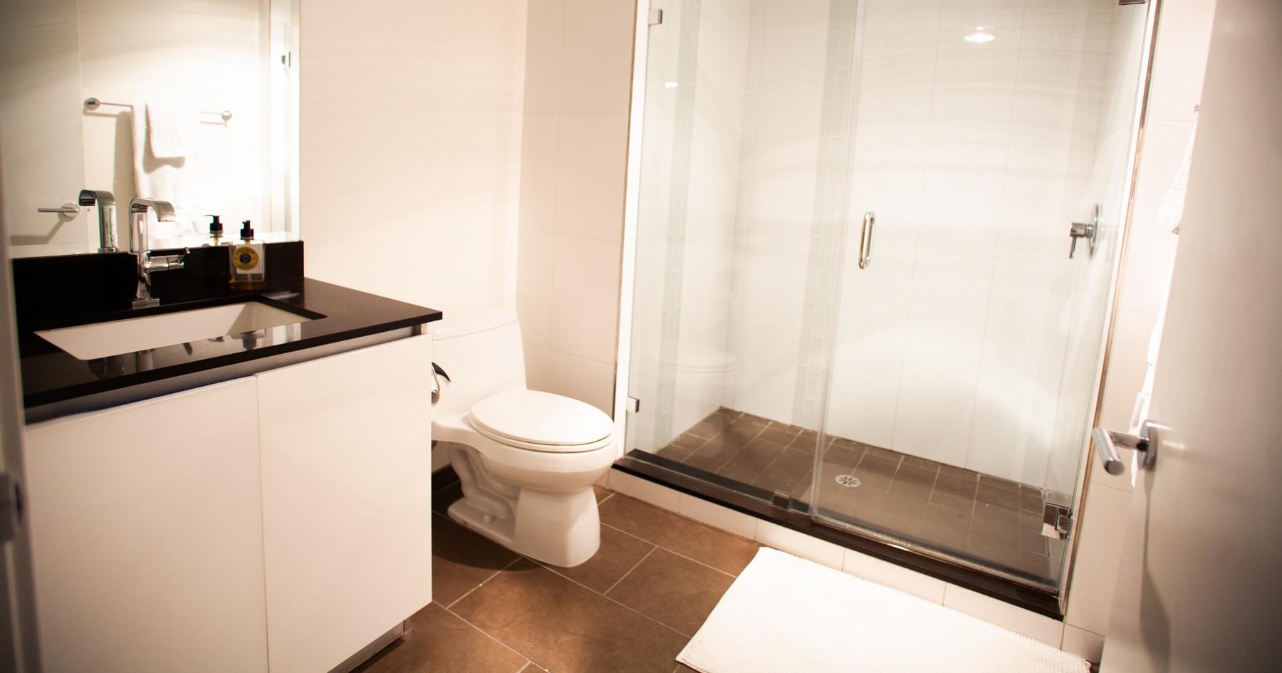Guest Bath, Sawtelle Condo