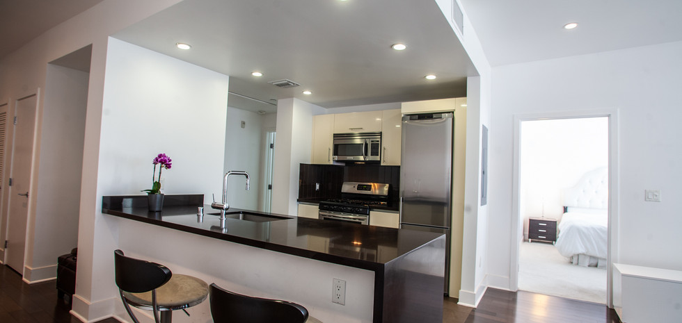 Sawtelle Condo Kitchen