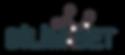 bilimset logo.png