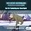 Thumbnail: Buz Devri Serisi: Dev Yer Tembel Hayvanı ve İnsan Figürü