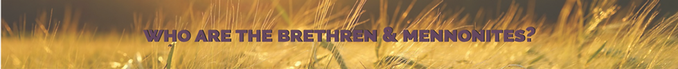 Who are the Brethren & Mennonites?