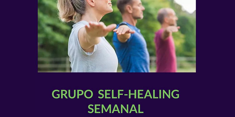 Grupo 2 Self-Healing Semanal AO VIVO Online, com Andréa Sula