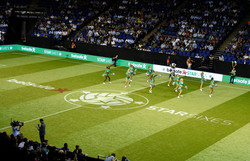star sixes 039