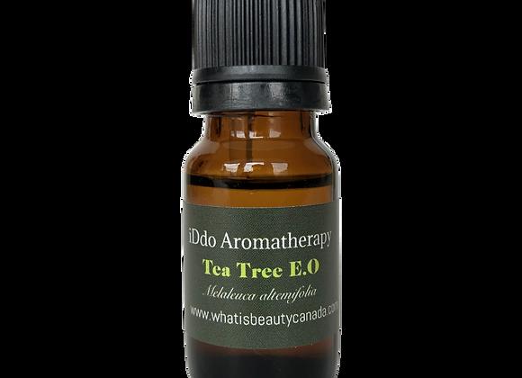 Tea Tree Essential oil  茶樹精油