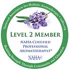 NAHA-LEVEL LOGO.jpg