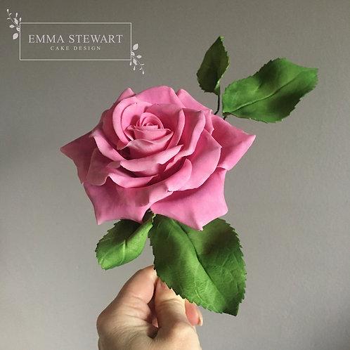 Online Workshop - Advance Stylised Roses