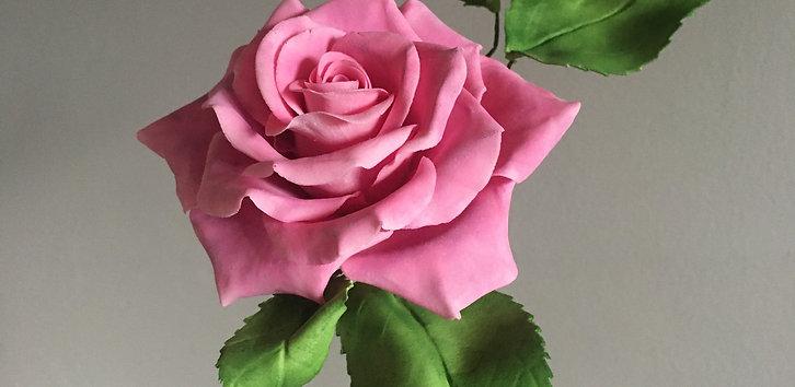 Online Workshop - Advance Roses