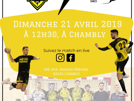Direction la Coupe de France 🤾‍♂️🐝