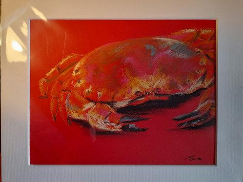 Cora Mullenger  - Cromer Crab