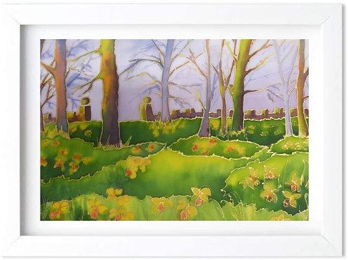 'Daffodils at Braddenham Hall' by Helena Anderson