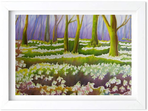'Snowdrops at East Lexham Hall' by Helena Anderson
